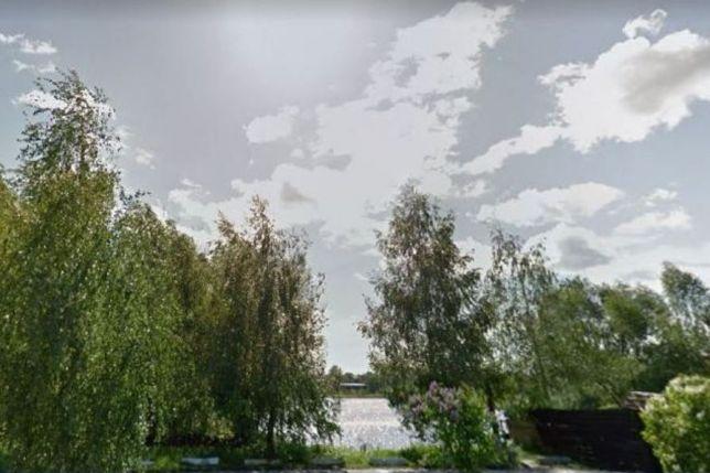 """У Гостомелі відбудеться акція """"Посади своє дерево"""" на Алеї корінних гостомельчан"""