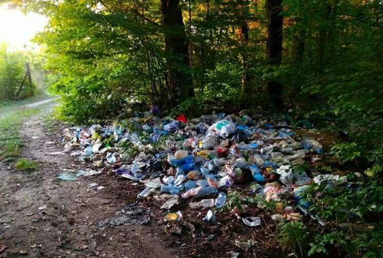 21 квітня Приірпіння долучиться до Всеукраїнської акції «За чисте довкілля»