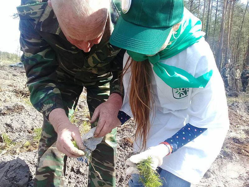 lis_2 Бородянські школярі висадили дерева на лісовій ділянці площею 0,9 га