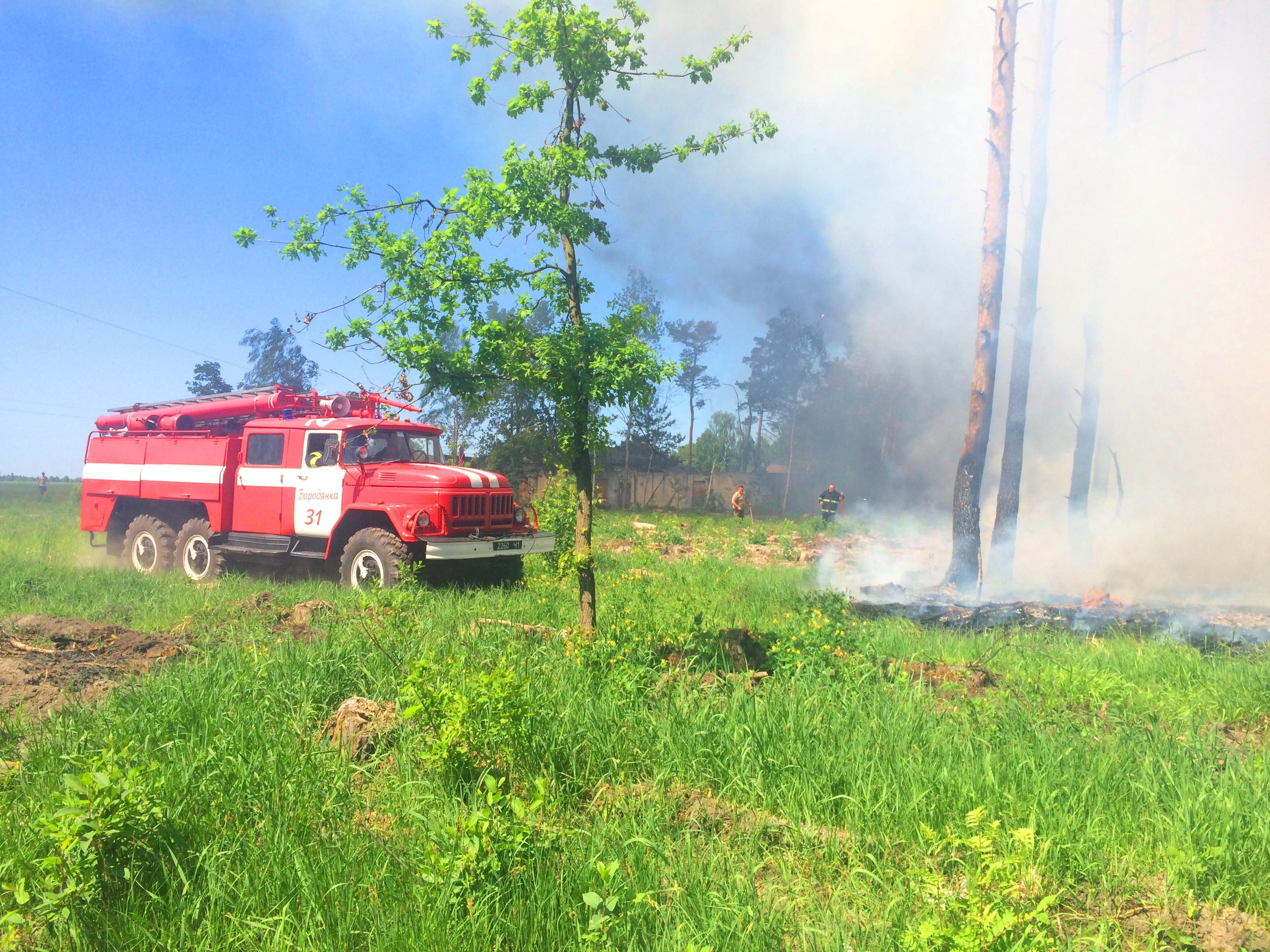 1405_pozhar Бородянські рятувальники ліквідували лісову пожежу