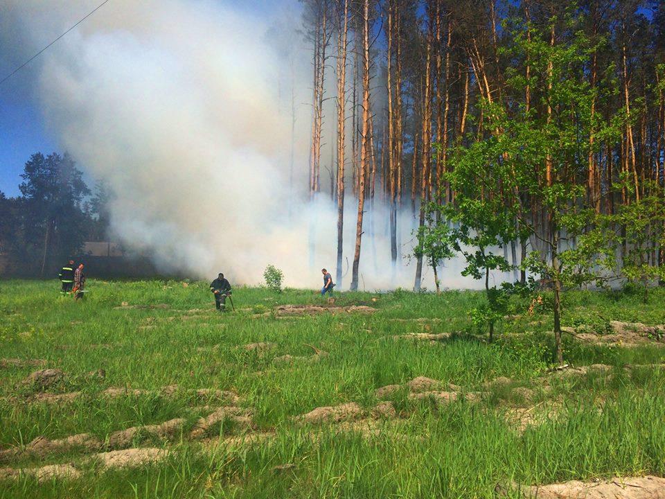 1405_pozhar_2 Бородянські рятувальники ліквідували лісову пожежу