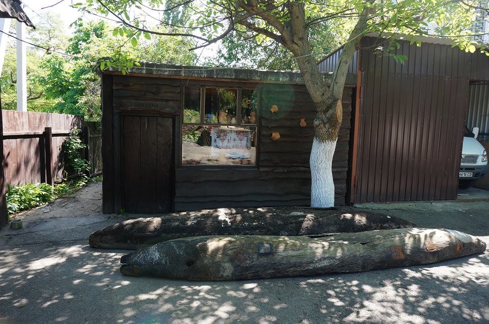 Відразу два човни-довбанки з'явилися у Вишгороді - музей, ВІКЗ, Вишгород - 32224773 155852371931857 7044768576246382592 n