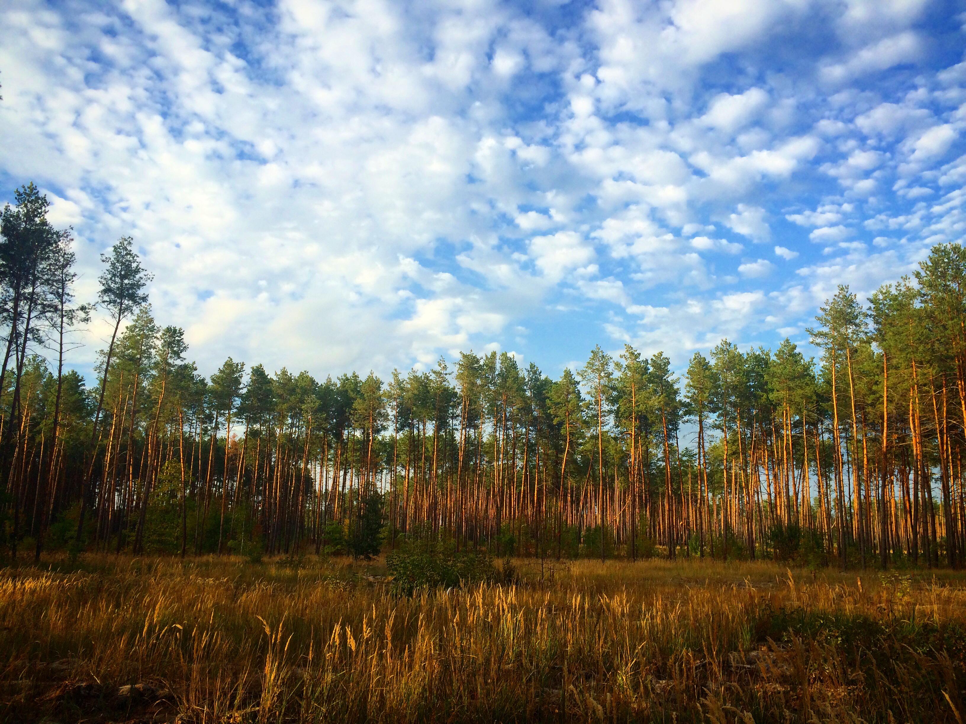 0806_vidpustka_9 Україна невідома: незвичайні маршрути для подорожі