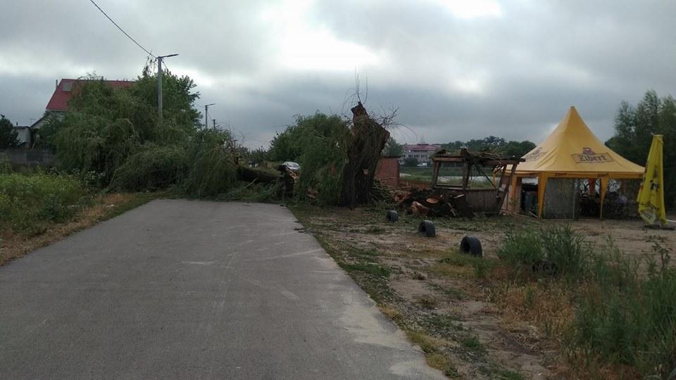 1-7 Нічна негода у Гостомелі пошкодила дерева