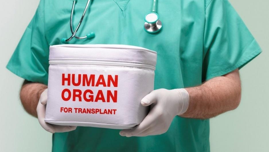 Президент України підписав закон про трансплантацію