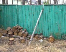 Знесення зелених насаджень, завуальовані кошториси та адмінпротоколи від муніципальної варти — основні питання виконкому Ірпінської міської ради