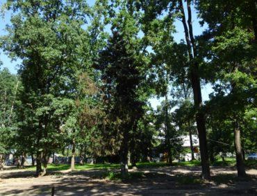 """Рейд Ірпенем: у парку всихають пересаджені ялинки, а на заплиточеній площі """"розквітає"""" творчодуха стела"""