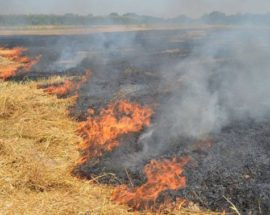 На Київщині рятувальники закликають бути пильними, адже є великий ризик загоряння торфовищ