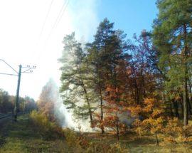 Ліс горить Ірпінь