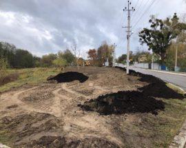 У Рославичах на Васильківщині будують паркову зону