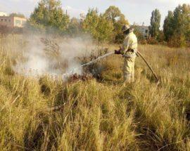 У Фастові сталась пожежа на території промзони