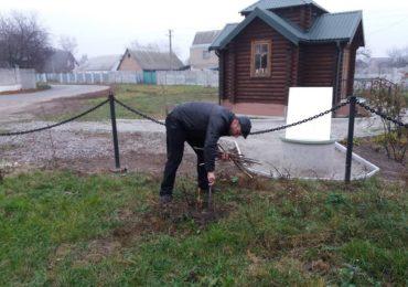 На Васильківщині громадські активісти висадили 30 дерев🌲