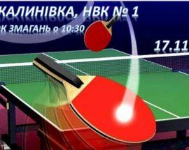 Любителі настільного тенісу зберуться у Калинівці