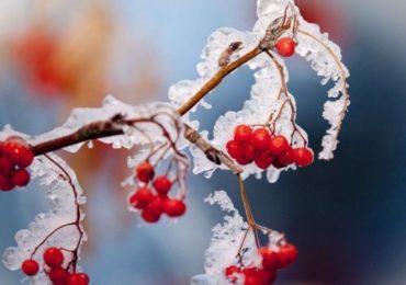 На цих вихідних синоптики обіцяють заморозки і сніг