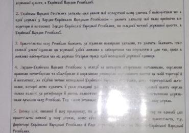 Схід і Захід разом! У Фастові відзначили 100-ліття підписання договору Злуки українських земель (ФОТО, ВІДЕО)