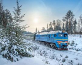 Затримка руху поїздів: на Київщині унаслідок падіння дерева стався обрив залізничної контактної мережі
