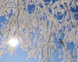 Погода в Україні: снігопади припиняться, але похолодає
