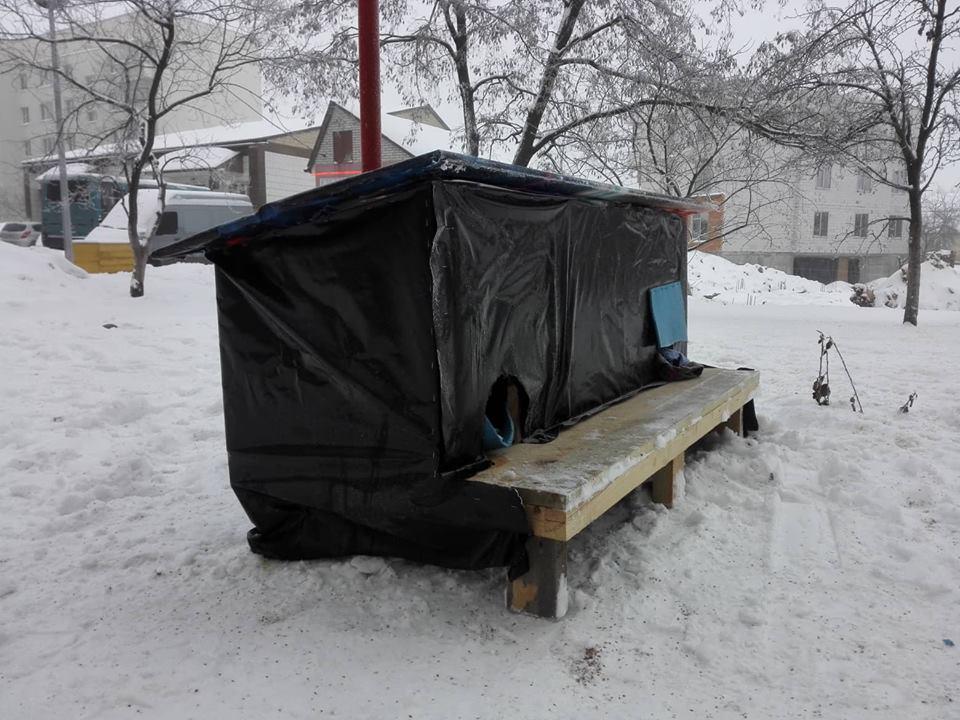 Доброта не потребує компліментів: у Чабанах хлопчина створив прихисток для бездомних чотирилапих - турбота - 50879416 2049493295144377 41699231886475264 n