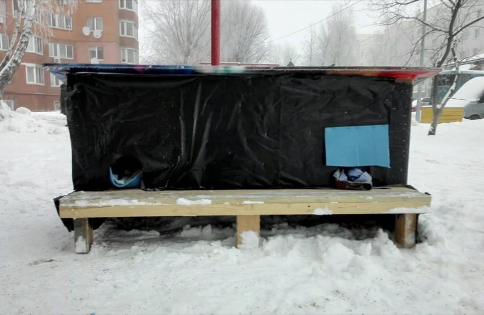 Доброта не потребує компліментів: у Чабанах хлопчина створив прихисток для бездомних чотирилапих - турбота - 50930214 2049493365144370 1477586431927910400 n