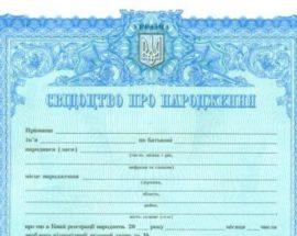 Свідоцтво про народження дитини у Василькові можна отримати відразу при виписці з пологового