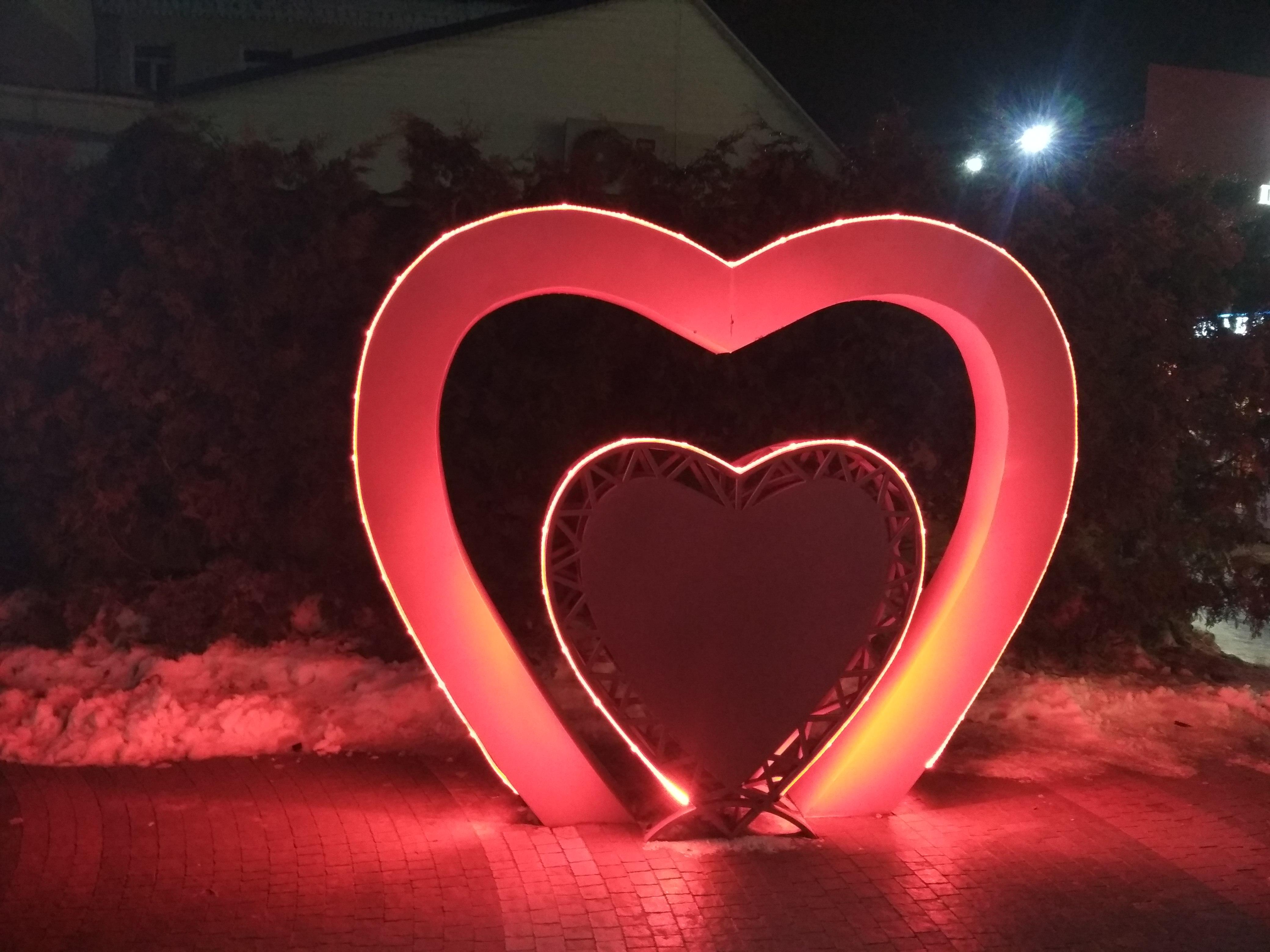 День святого Валентина у Фастові нові створені сім'ї та відзначення «золотого весілля»