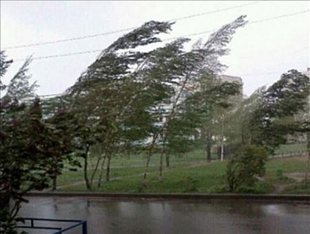 Сильні вітри охопили Україну - Укргідрометцентр, Україна, пориви, помаранчевий рівень небезпечності, погода, небезпека, київщина, вітер - 1449044448 foto1
