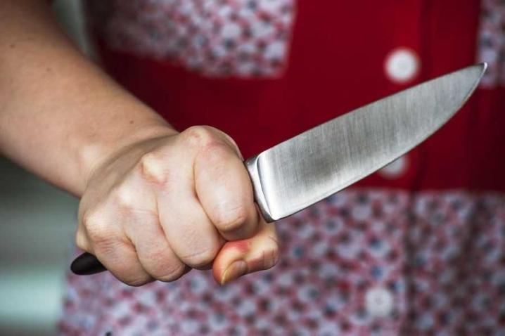 Боярка: жінка, яка вбила співмешканця, потрапить у в'язницю - ув'язнення, тілесні ушкодження, ножові удари, Києво-Святошинська місцева прокуратура, вбивство, Боярка - 1537796559 b1cc825394d7a5adcb9da38dae1abb51 xl