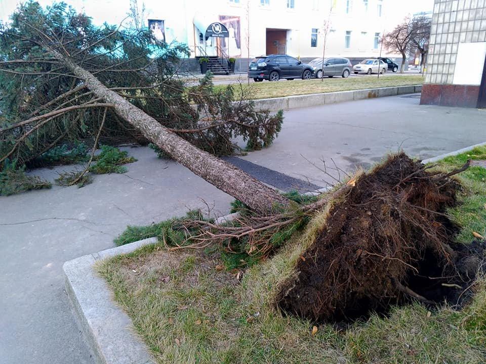 Без світла, дахів, дерев і білбордів: наслідки буревію на Київщині