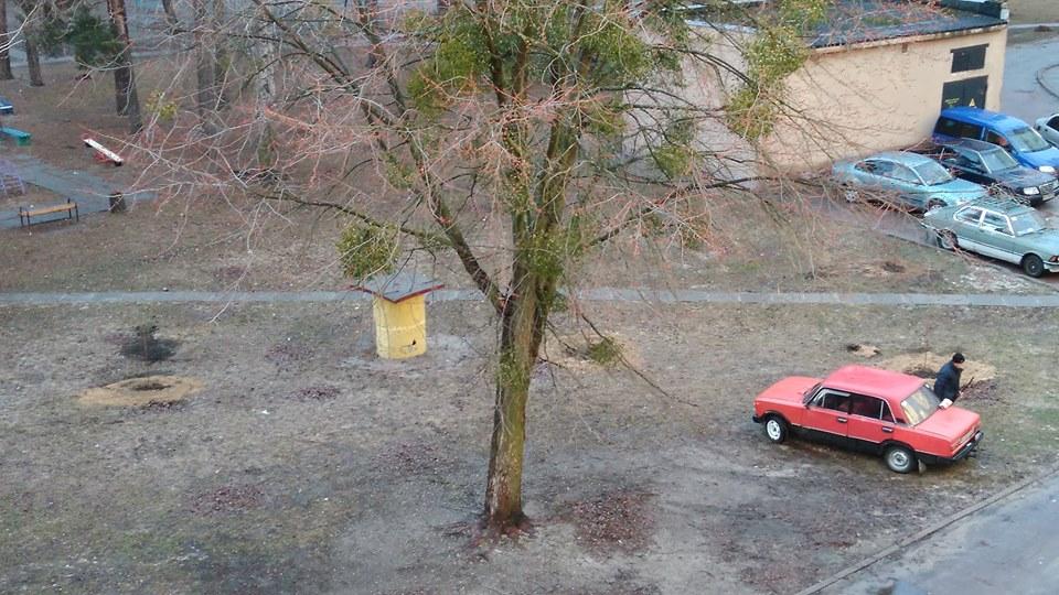 Контрасти Славутича: буревій та озеленення