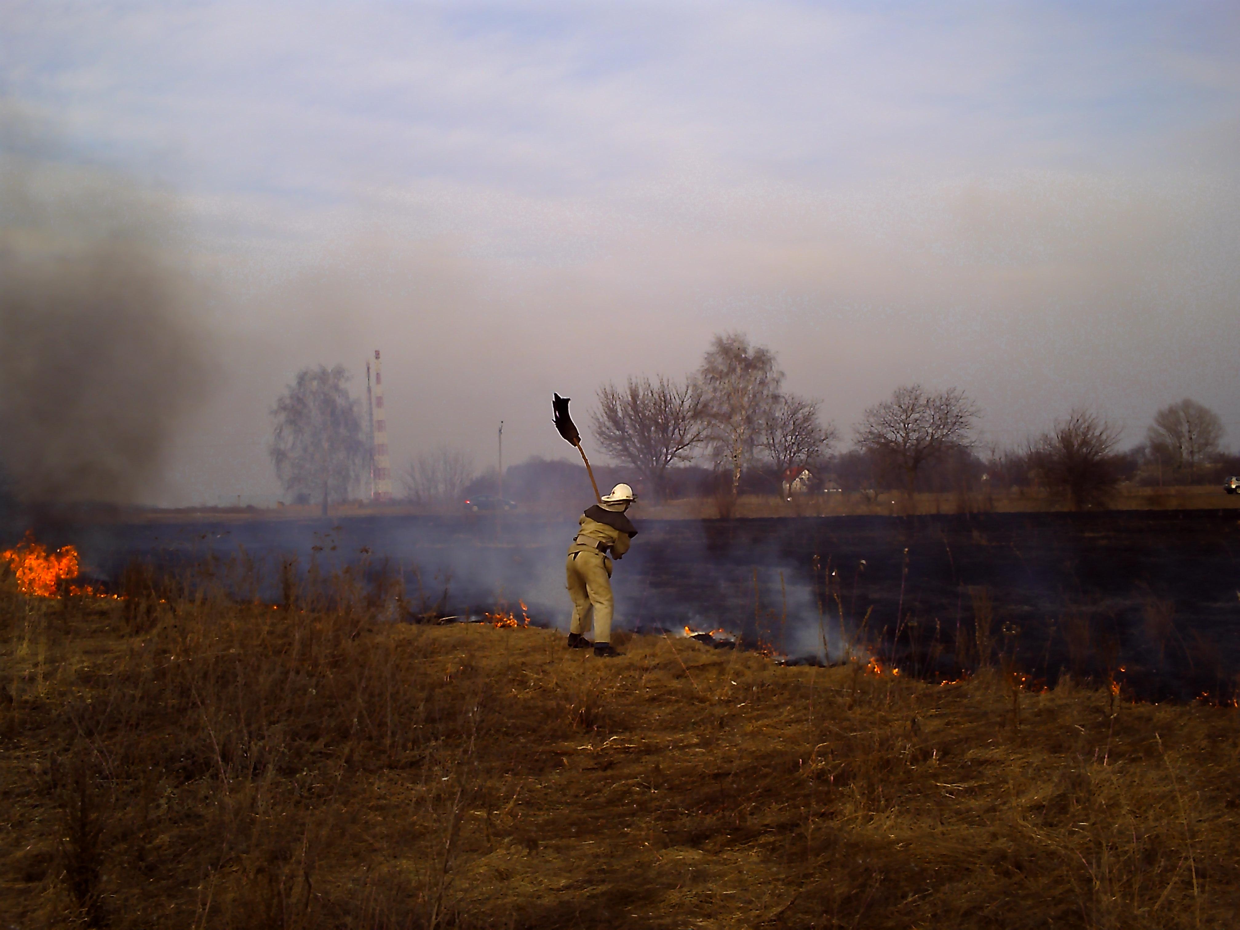 На Київщині масово спалюють суху траву