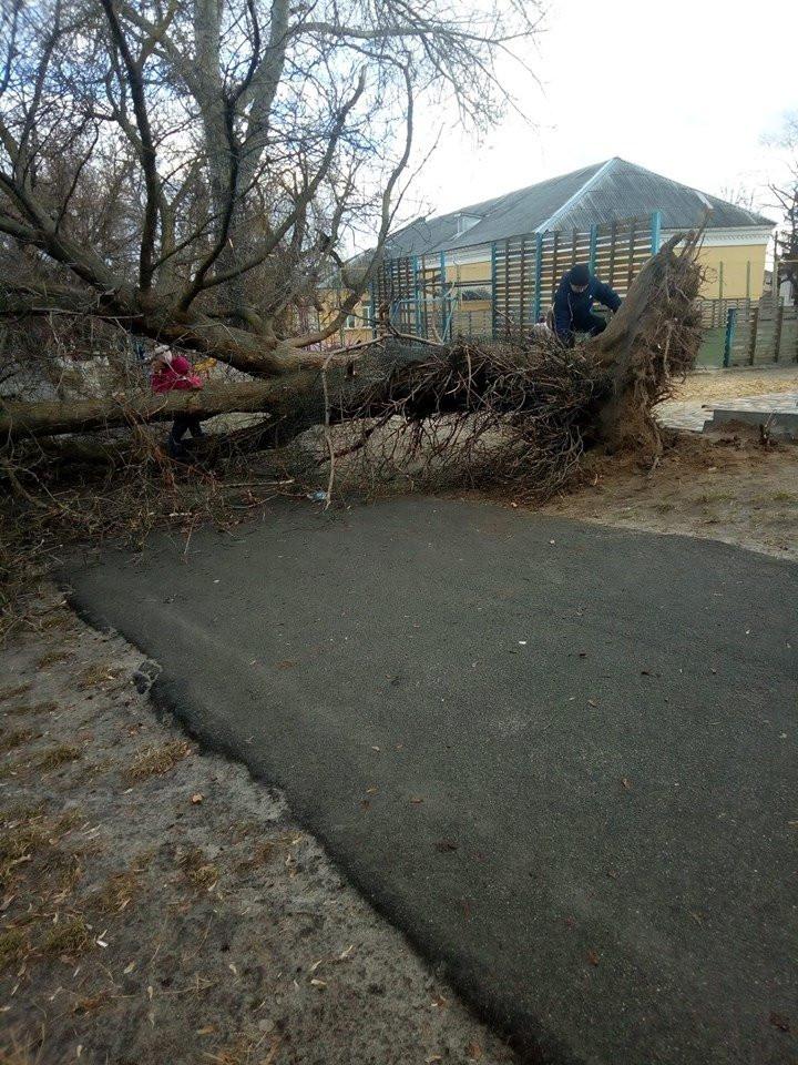Негода у Бучі: завалені дерева та зірване накриття на вході до підземного переходу