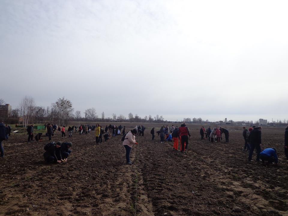 Освітяни Бородянщини висадили понад 5 тисяч дерев - акція - 0204 dereva3