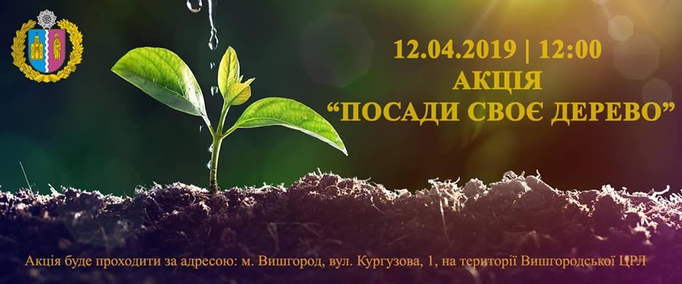 0409_Posady_derevo У Вишгороді толокою озеленять місто