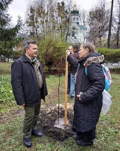 «Посади своє дерево»: у Вишгороді біля центральної райлікарні буде парк - київщина, екологія, Вишгородська районна рада, Вишгород - 0412 Toloka2 OBRIZ