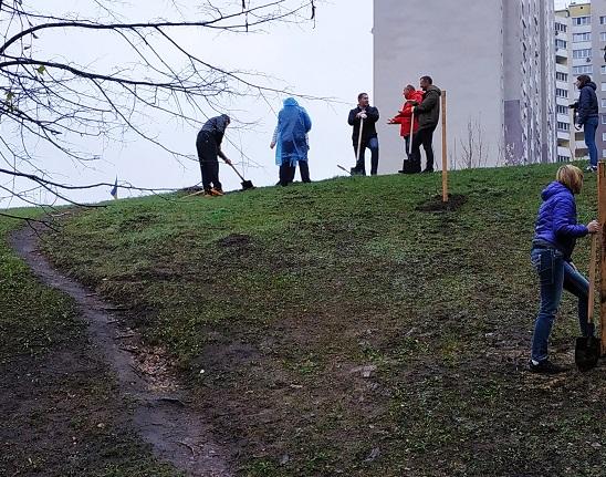 «Посади своє дерево»: у Вишгороді біля центральної райлікарні буде парк - київщина, екологія, Вишгородська районна рада, Вишгород - 0412 Toloka8 obriz