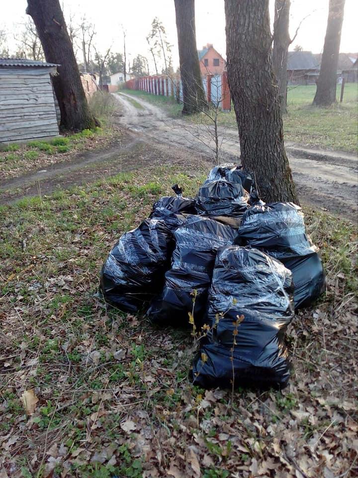 На Вишгородщині громади планують заробляти на смітті - сортування сміття, прибирання, київщина, екологія, вторсировина, Вишгородський район - 0418 Pirnove smit prybyr3