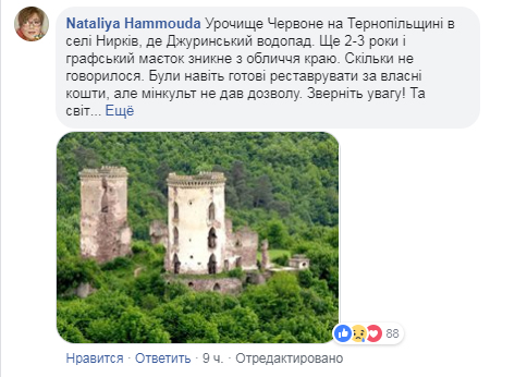 Українців обурила пропозиція міністра культури допомогти Франції - Париж, мінкультури - 1604 notrdam4