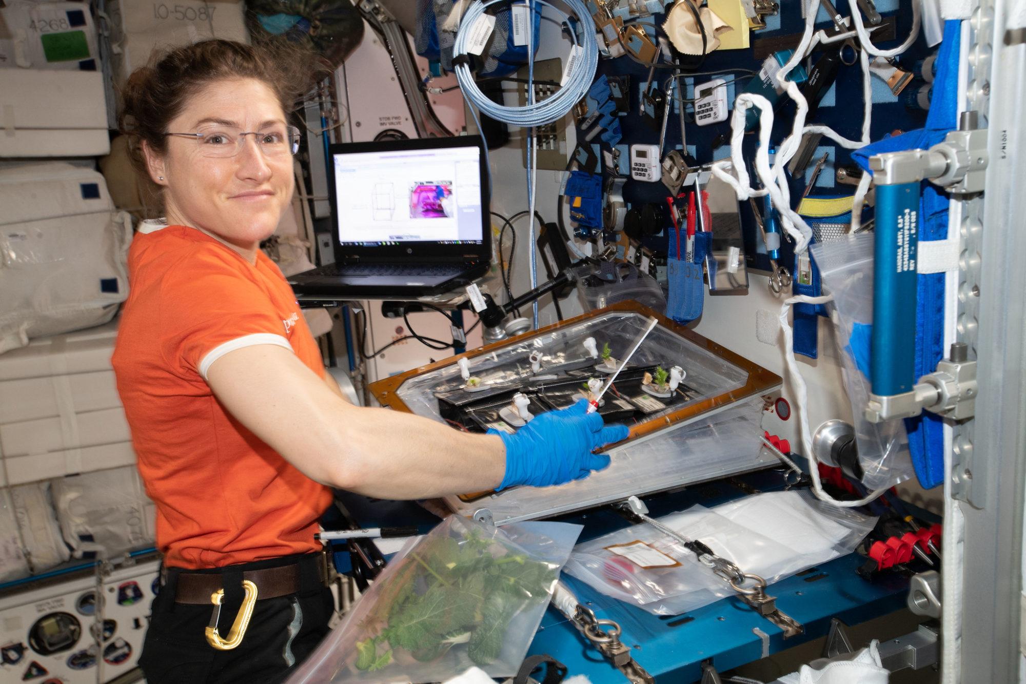 1704_koh-2000x1333 NASA планує встановити новий рекорд по перебуванню жінки в космосі