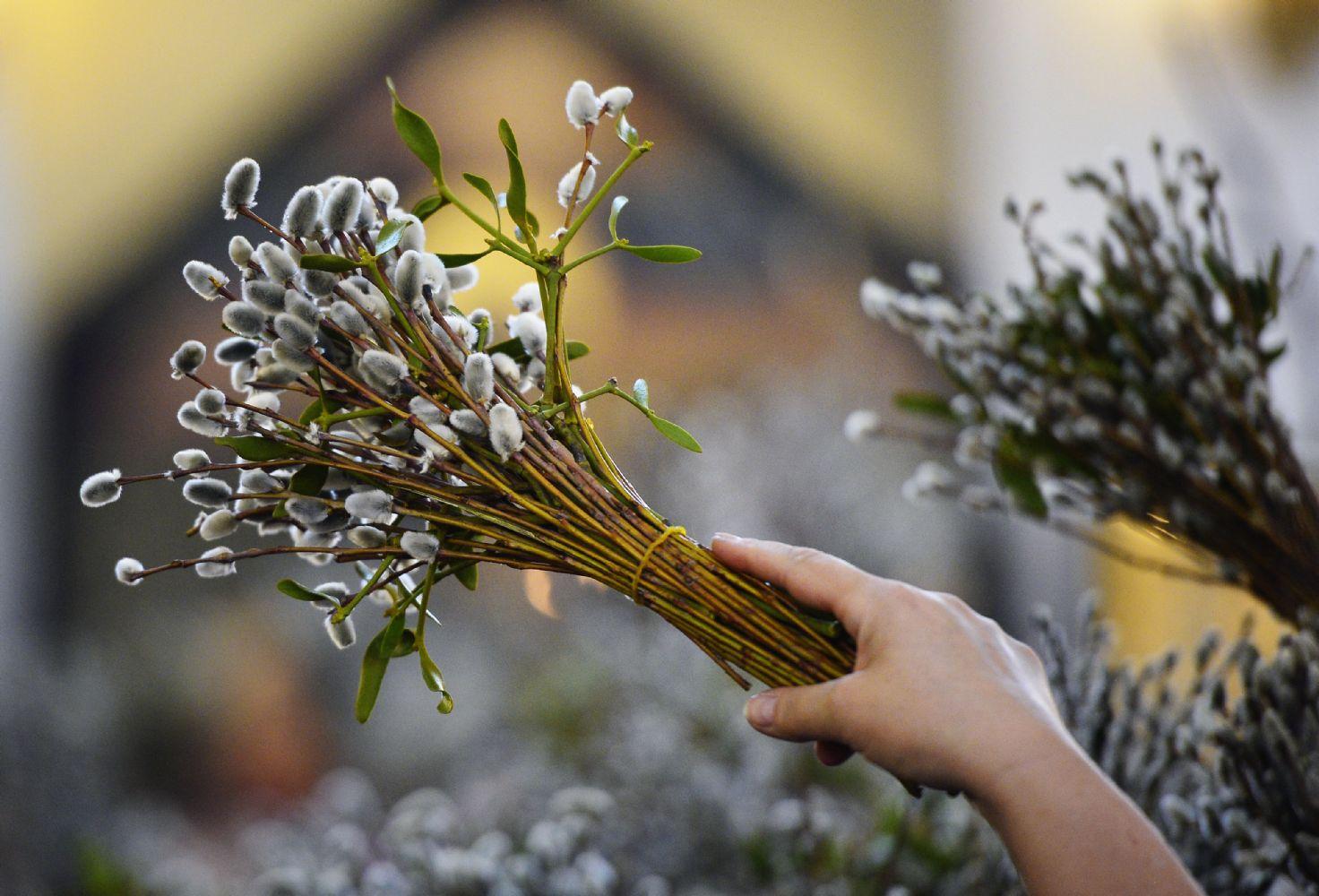 Вербна неділя: традиції, прикмети та обряди -  - 544644