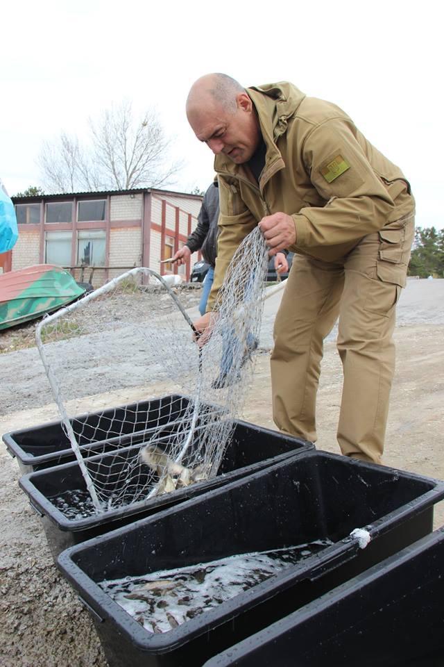 Більше трьох тонн малька випустили до водойм Київщини -  - 57133770 2172870832789430 5054701363749978112 n