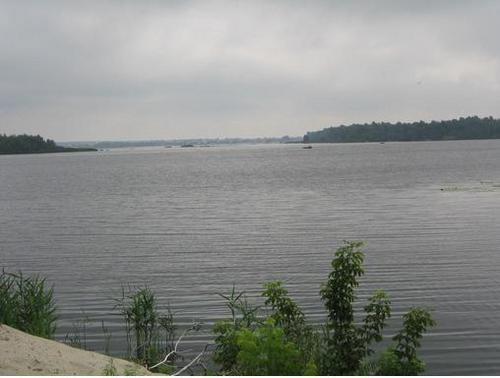 Гектар берега Дніпра повинен повернутися мешканцям Козина -  - 782802 1