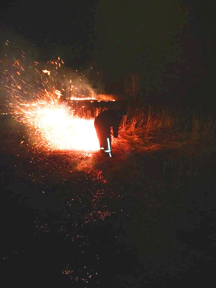 На Київщині пожежа трав'яного настилу ледь не обернулася справжньою трагедією - пожежа, Озірщина, Бородянський район - 804 pozhezha