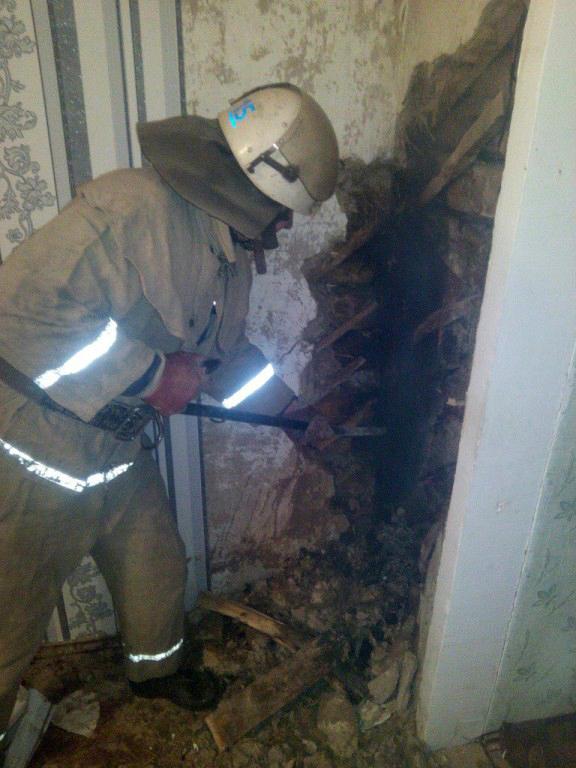 В Таращанському районі під час пожежі загинула жінка