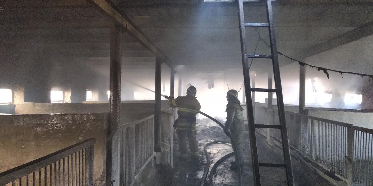 Ferma Пожежа у Кислівці: на Таращанщині на фермі загорілася покрівля