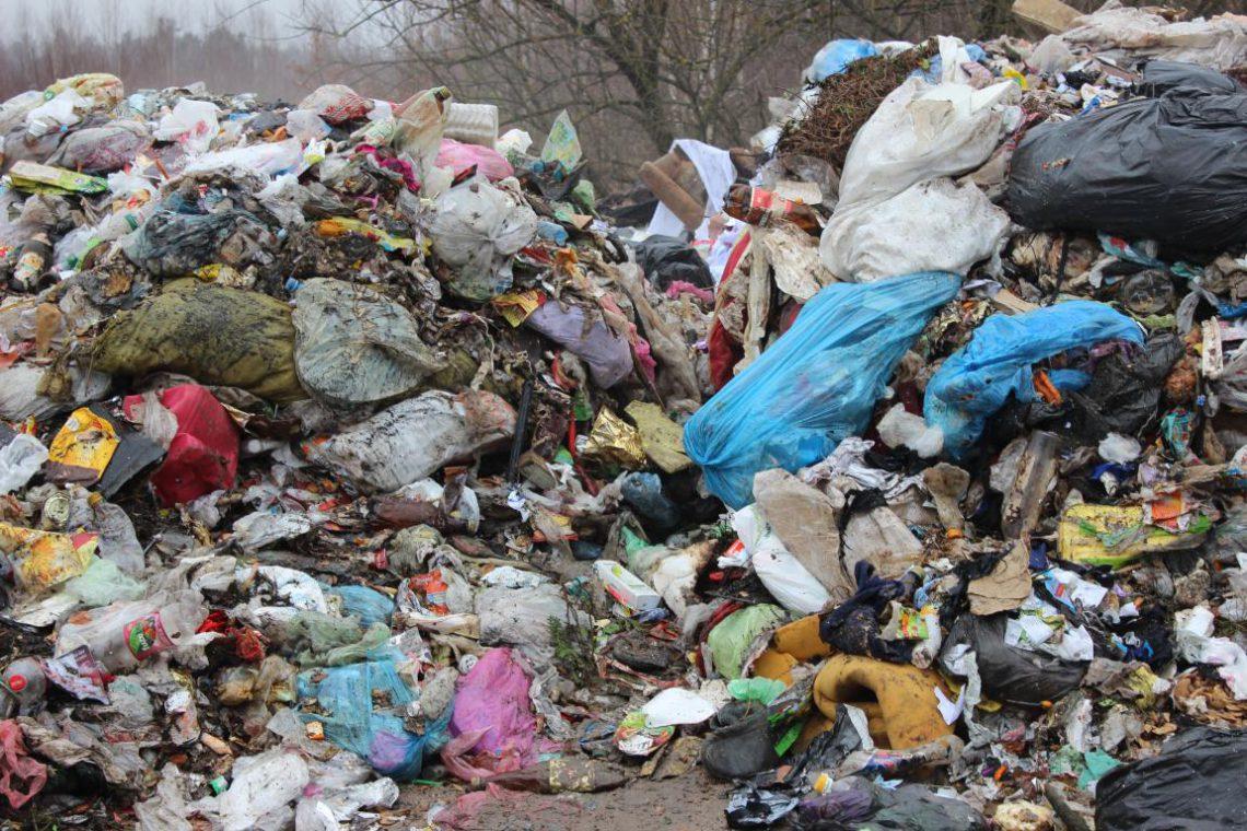 IMG_2591-1140x760 Екологічна катастрофа загрожує місту Березань