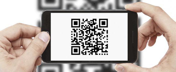 Вишгородський історико-культурний заповідник впровадить QR-кодування - Український культурний фонд, київщина, грант, Вишгород - 0530 VIKZ Koduvannya