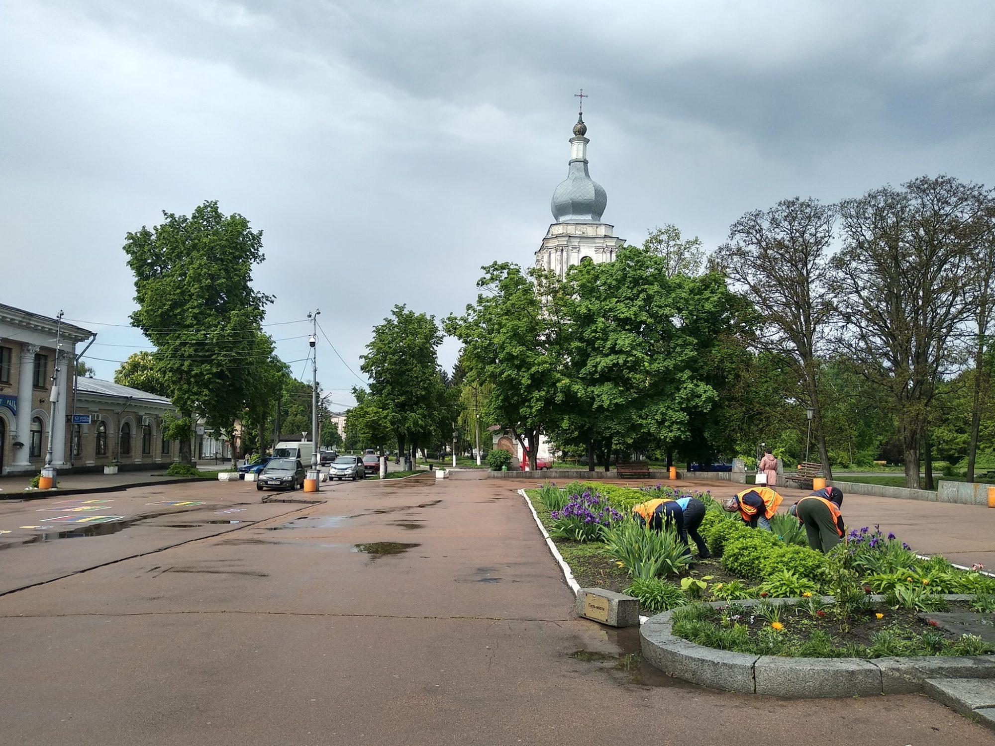 1-22-2000x1500 У Переяславі бабуся поцупила квіти із центральної клумби міста