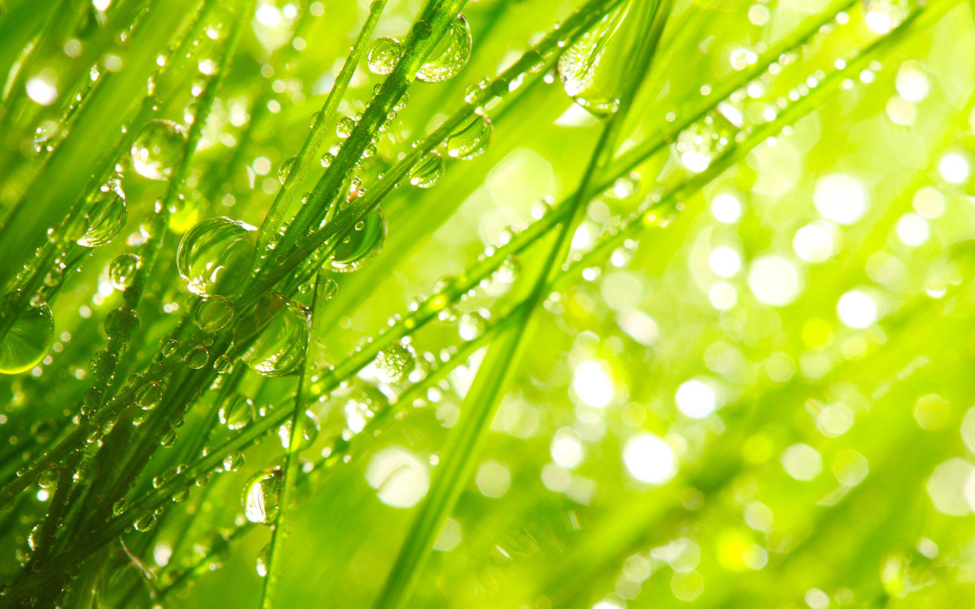 14 травня синоптики обіцяють на Київщині дощі та грози - погода - 1405 pogoda1 2000x1250