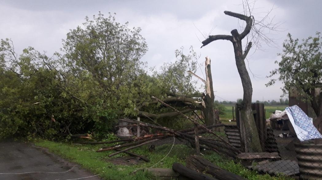 1705_smerch3 На Житомирщині пронісся смерч (ВІДЕО): які регіони України у зоні ризику сьогодні?
