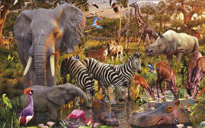 2205_byo 22 травня в світі відзначають Міжнародний день біорізноманіття